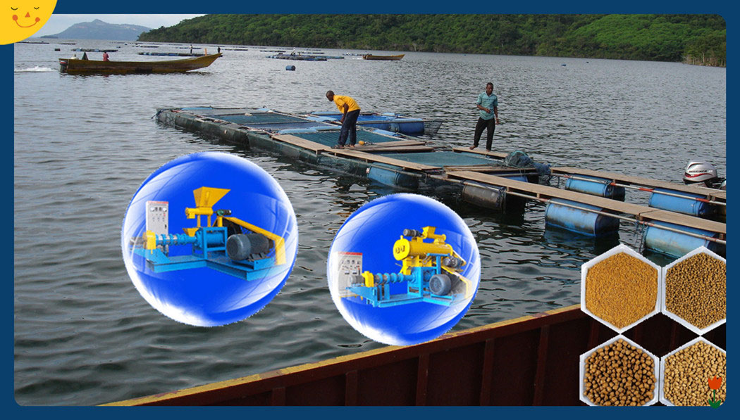 Fish_Feed_Extruder_Thailand_for_Fish_Farming_Making_Fish_Feed